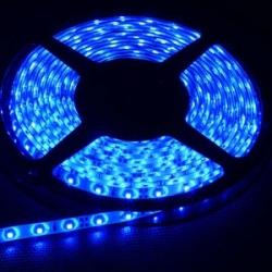 5M LED 3528B Sinine (pritsmekindel)